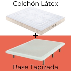 Pack Látex con Base